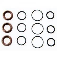 Interpump Kit 97 Water Seal Kit