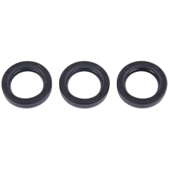 Interpump Kit 159 Oil seals 18x26x6