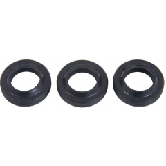 Interpump Kit 271 Oil seals 15x24x5/7 set of 3